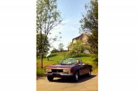 Ab Modelljahr 1977 wurde das 504 Cabriolet auch mit V6-Motor angeboten